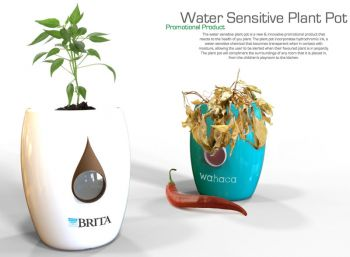 Water Sensitive Plant Pot
